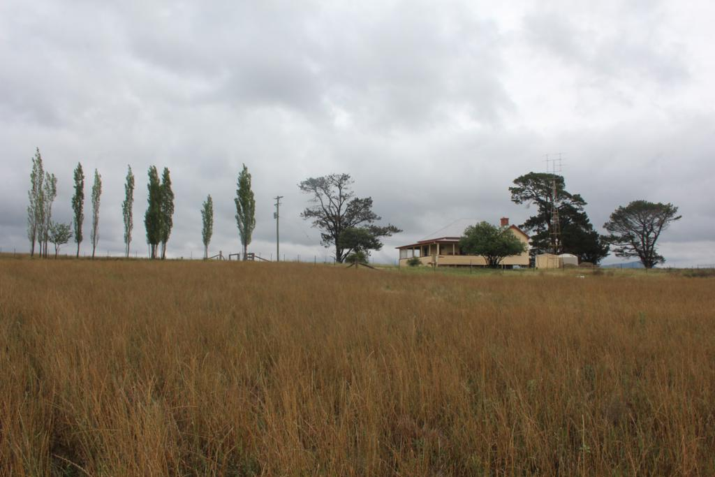 Photo of 315 Mt Lindesay Road TENTERFIELD, NSW 2372