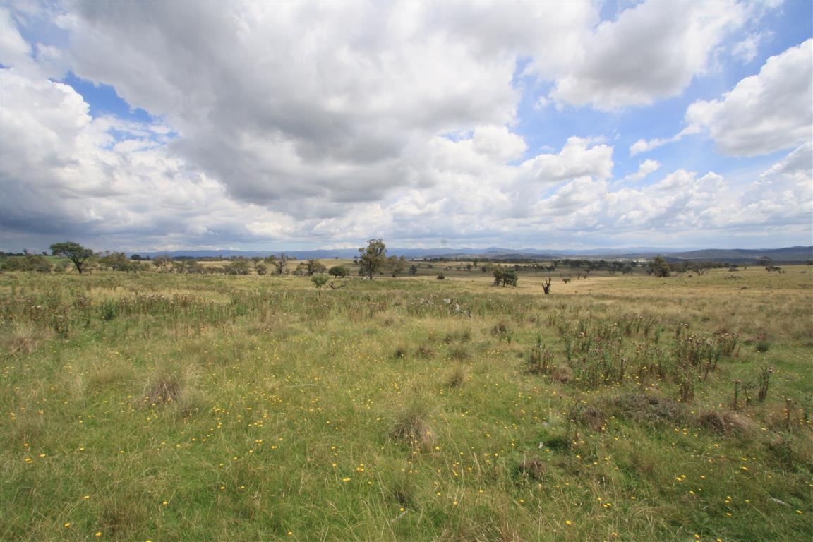 Photo of Lot 65 Avonside Road JINDABYNE, NSW 2627