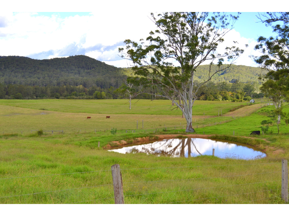 Photo of 1496 Pipeclay Road Pipeclay, NSW 2446