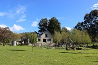 Picture of Lilydale