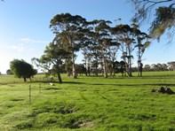 Picture of 302 Buller Road, Karridale
