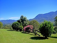 Picture of 2209 Waterfall Way, Bellingen