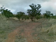 Picture of Section 247 Main North Road, Wirrabara