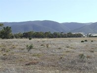 Main photo of Lot 11 Muster Drive, Napperby - More Details