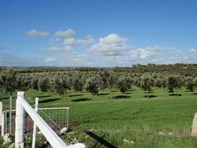 Picture of Lot 28 Brand Highway, Bookara