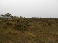 Main photo of Lot 17 Jervoise Street, Orroroo - More Details
