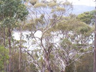 Picture of Lot 1 Arthur Highway, Murdunna