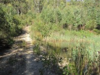 Picture of Lot 19 Forest Heights Drive, Tugrah