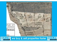 Picture of Lot 31-37 Mulpata Road, Lameroo
