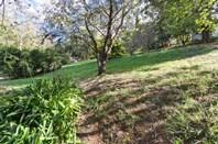Picture of 64 Winns Road, Coromandel Valley