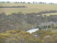 Picture of 1150 Marnigarup East Road, Jerramungup