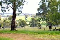 Picture of 905 Red Gully Road, Gingin