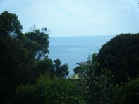 Picture of 110 Top Rd West, Greens Beach