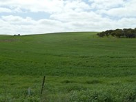 Picture of Lot 65 Burwood  Rd, Red Creek
