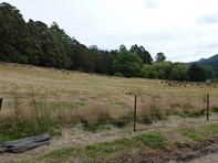 Picture of Lot 1 Gordon River Road, Tyenna