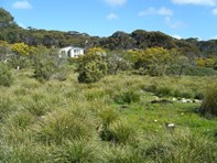 Picture of Lot 13 Coral Crescent, Island Beach
