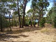 Picture of 13 Bradys Lookout Road, Rosevears