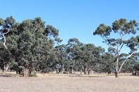 Main photo of 3080 Naracoorte Road, Bordertown - More Details