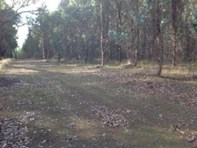 Picture of Lot 3618 Muir Highway, Dingup