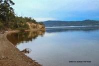 Picture of 428 Cygnet Coast Road, Petcheys Bay