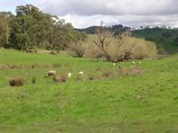 Picture of Lot 72 Retreat Valley Road, Gumeracha