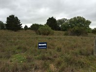 Picture of Lots/895-908 Weber & Pangarinda, Wellington East