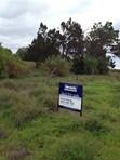 Picture of Lots 895 Pangarinda Road, Wellington East