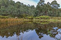 Picture of Lot 6/533 Sugarloaf Road, Carlton River
