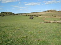 Picture of Lot 75 Chapman Valley Road, Nanson