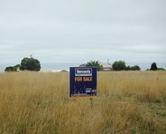 Picture of Lot 133 Waratah Street, Grassy