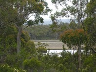 Picture of Lot 8 Lune River Road, Lune River