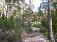 Picture of Lot 1 Church Road, Dromedary