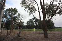 Main photo of Lot 408 South West Highway, Yarloop - More Details