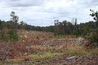 Picture of 11340 Kings Road, North Greenbushes