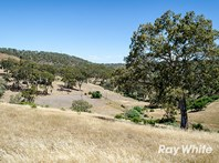 Picture of . Lafferty Road, Chandlers Hill
