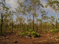 Picture of Lot 7090 Compigne Rd, Girraween
