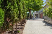 Main photo of 51A Guildford Road, Mount Lawley - More Details