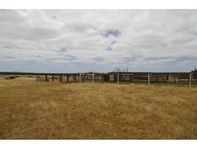 Picture of Lot 100 Jackson Road, Narrikup