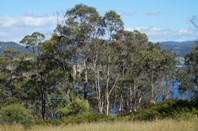 Picture of RA Airds Road, Wattle Grove
