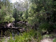 Picture of Lot 204 North Hazelvale Road, Hazelvale