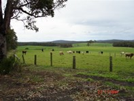Picture of 1248-580 Hay Location, Hazelvale