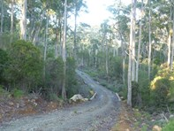 Picture of 186 Mountain Rd, Lilydale