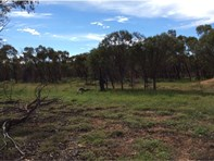 Picture of Lot 104 Tyndall Road, Jennacubbine