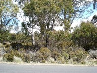 Picture of Lot 37,69 Arthurs Lake Road, Wilburville, Wilburville