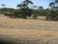 Picture of 'Mooribin' Coalara Road, Badgingarra