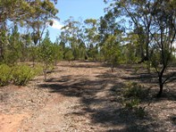 Main photo of Lot 12 Goldfields Road, Cockatoo Valley - More Details