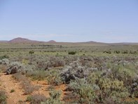 """Picture of . """"Kalabity Station"""", Broken Hill"""
