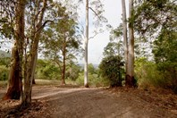Picture of 1900 - Lot 4 Maleny-Stanley River Road, Peachester