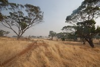 Picture of 2 Browns Road, Narrogin