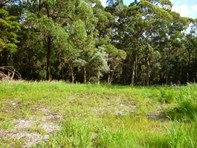 Main photo of Lot 5/367 The Scenic Rd, Macmasters Beach - More Details